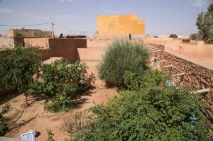 17_Cappuccini_in_Algeria.jpg